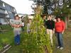 Srečanje otrok in mentorjev vrtov na šolah